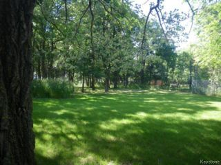 Photo 14: 380 Oakdale Drive in WINNIPEG: Charleswood Residential for sale (South Winnipeg)  : MLS®# 1424260