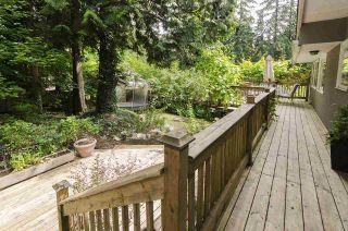 Photo 19: 686 E OSBORNE Road in North Vancouver: Princess Park House for sale : MLS®# R2082991