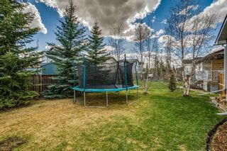 Photo 48: 717 Stonehaven Drive: Carstairs Detached for sale : MLS®# A1105232