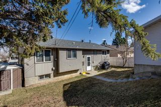 Photo 21: 7135 8 Street NW in Calgary: Huntington Hills Detached for sale : MLS®# A1093128