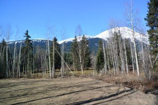 """Photo 26: 4365 LAKE KATHLYN Road in Smithers: Smithers - Rural House for sale in """"Lake Kathlyn"""" (Smithers And Area (Zone 54))  : MLS®# R2557275"""