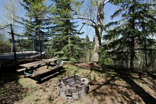 Photo 33: 56 MACEWAN GLEN Drive NW in Calgary: MacEwan Glen House for sale : MLS®# C4173721
