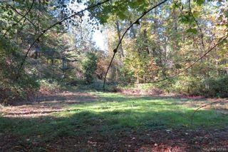 Photo 15: 4861 West Saanich Rd in SAANICHTON: SW Beaver Lake Land for sale (Saanich West)  : MLS®# 799671