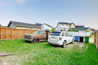 Photo 19: 17 Saddlemont Grove NE in Calgary: Saddle Ridge Detached for sale : MLS®# A1145520