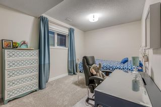 Photo 39: 226 Coral Shores Landing NE in Calgary: Coral Springs Detached for sale : MLS®# A1107142