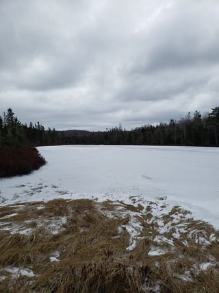 Photo 4: Lots Melrose Country Harbour Road in Country Harbour: 303-Guysborough County Vacant Land for sale (Highland Region)  : MLS®# 202102147