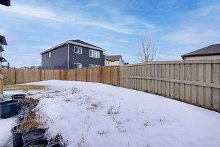 Photo 38: 2455 ASHCRAFT Crescent in Edmonton: Zone 55 House for sale : MLS®# E4233244