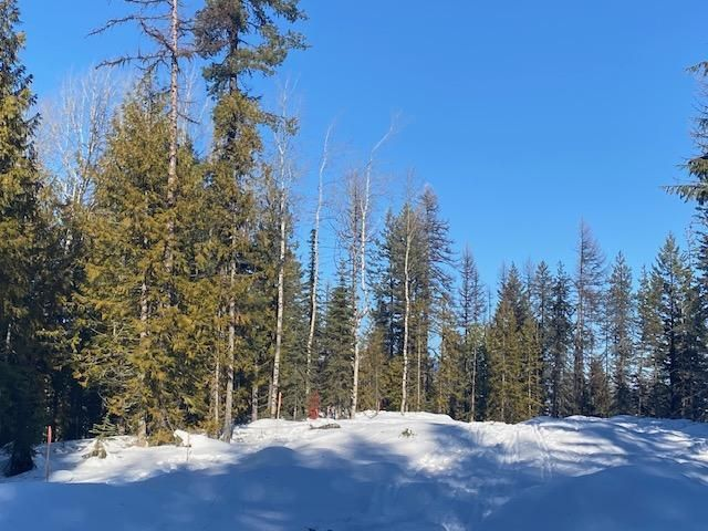 Main Photo: Lot 8 RED MOUNTAIN ROAD in Rossland: Vacant Land for sale : MLS®# 2455878