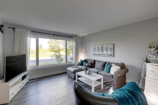 Photo 8: 6310 37 Street SW in Calgary: Lakeview Semi Detached for sale : MLS®# A1147557