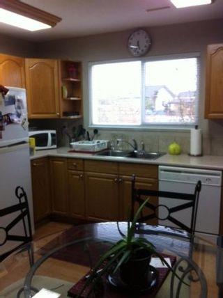Photo 16: 20252 KENT Street in Maple Ridge: Southwest Maple Ridge House for sale : MLS®# R2098398
