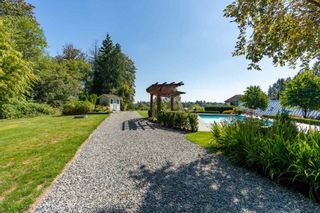 Photo 15: 9412 222 Street in Langley: Fort Langley House for sale : MLS®# R2555848