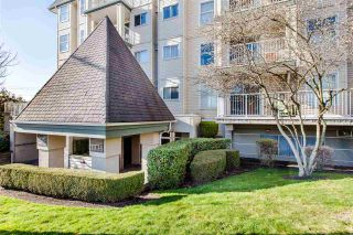 """Photo 16: 209 1035 AUCKLAND Street in New Westminster: Uptown NW Condo for sale in """"QUEEN'S TERRACE"""" : MLS®# R2438580"""