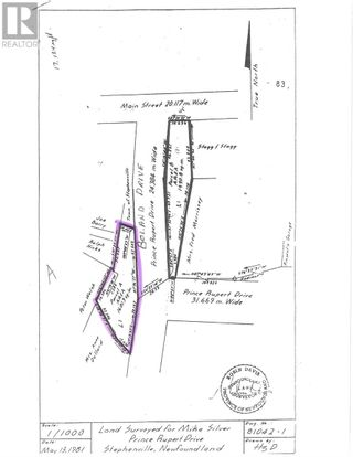 Photo 7: 93 West Street AND 17 Boland Avenue in Stephenville: Vacant Land for sale : MLS®# 1179881