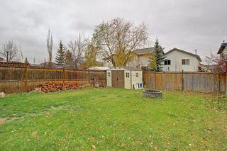Photo 30: 212 MT APEX Green SE in Calgary: McKenzie Lake House for sale : MLS®# C4144299