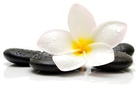 FEATURED LISTING: ~ Wellness Day Spa