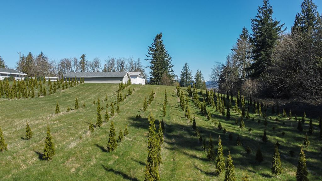 """Main Photo: 31945 GLENMORE Road in Abbotsford: Matsqui Land for sale in """"DOWNES RD"""" : MLS®# R2565768"""