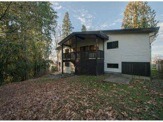Photo 17: 10446 RIVER Road in Delta: Nordel Duplex for sale (N. Delta)  : MLS®# F1403425