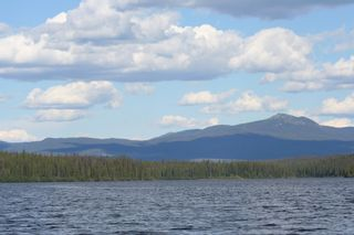 Photo 5: 143 Laidman Lake, Smithers, BC, V0L 1C0 in Smithers: Home for sale : MLS®# N234907