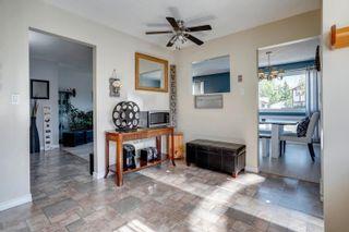 Photo 9: 14269 30 Street in Edmonton: Zone 35 House for sale : MLS®# E4261752