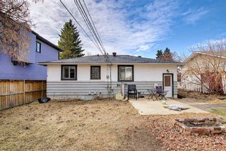Photo 26: 4328 70 Street NW in Calgary: Bowness Detached for sale : MLS®# A1093003