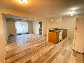 Photo 2: 112 1188 HYNDMAN Road in Edmonton: Zone 35 Condo for sale : MLS®# E4258904