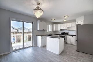Photo 8: 254 Tarawood Close NE in Calgary: Taradale Detached for sale : MLS®# A1015815