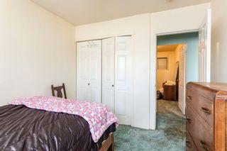 Photo 18:  in Edmonton: Zone 22 House for sale : MLS®# E4254166