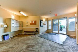 Photo 5: 207 12130 80 Avenue in Surrey: West Newton Condo for sale : MLS®# R2302874