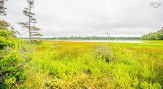 Photo 14: 1168 Pugwash River Road in Pugwash River: 102N-North Of Hwy 104 Residential for sale (Northern Region)  : MLS®# 202119700