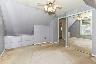 Photo 21: 93 Newlands Avenue in Hamilton: House for sale