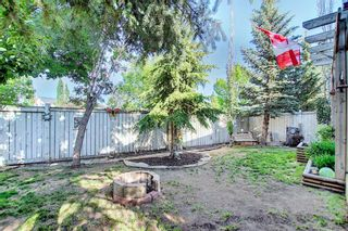 Photo 42: 131 Bridlewood Circle SW in Calgary: Bridlewood Detached for sale : MLS®# A1126092