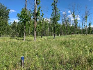 Photo 2: 31 Amherst Drive in Pinawa: Vacant Land for sale : MLS®# 202020851
