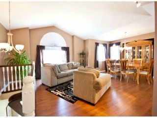 """Photo 2: 46730 BRAESIDE Avenue in Sardis: Promontory House for sale in """"PROMONTORY HEIGHTS"""" : MLS®# H1301751"""