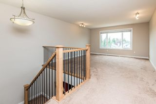 Photo 21: 224 CAMPBELL Point: Sherwood Park House for sale : MLS®# E4255219