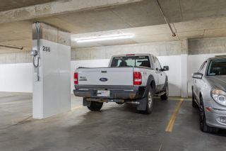 Photo 31: 213 11080 ELLERSLIE Road in Edmonton: Zone 55 Condo for sale : MLS®# E4263614