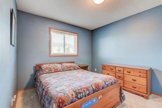 Photo 31: 205 Hawkmount Close NW in Calgary: Hawkwood Detached for sale : MLS®# A1092533