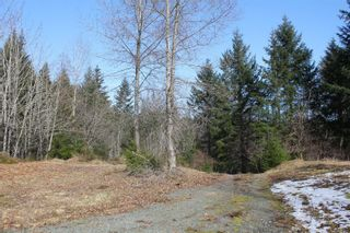 Photo 14: 4325 York Rd in : CR Campbell River South House for sale (Campbell River)  : MLS®# 867428