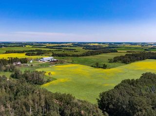 Photo 22: 461017A RR 262: Rural Wetaskiwin County House for sale : MLS®# E4255011