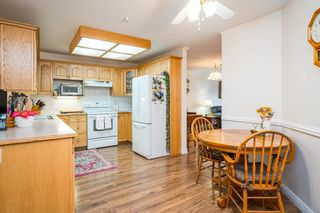 Photo 4: 211 2626 COUNTESS Street: Condo for sale in Abbotsford: MLS®# R2594298