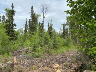 "Photo 3: 10050 HARTMAN Road in Prince George: Western Acres Land for sale in ""WESTERN ACRES"" (PG City South (Zone 74))  : MLS®# R2465258"