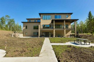 Photo 47: 1 Carriage Lane: Rural Strathcona County House for sale : MLS®# E4224629