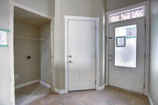 Photo 29: 13 Taralake Heath in Calgary: Taradale Detached for sale : MLS®# A1061110