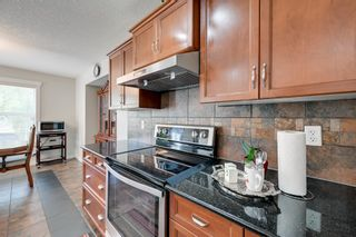 Photo 12: 1329 MALONE Place in Edmonton: Zone 14 House for sale : MLS®# E4247611