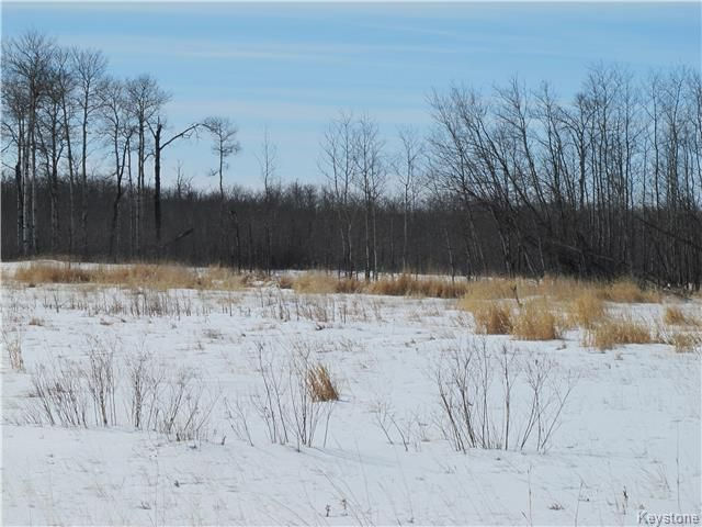 Photo 4: Photos:  in Narcisse: RM of Armstrong Residential for sale (R19)  : MLS®# 1801849