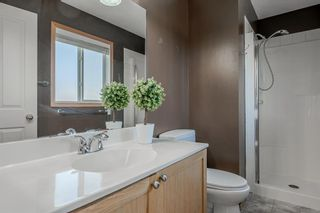Photo 18: 53 Royal Birch Grove NW in Calgary: Royal Oak Detached for sale : MLS®# A1115762