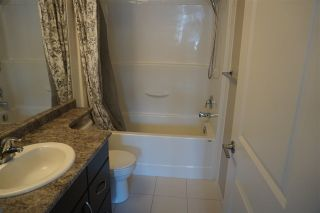 Photo 15: 56 1816 Rutherford Road in Edmonton: Zone 55 Townhouse for sale : MLS®# E4240923