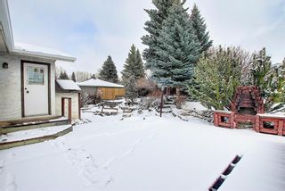 Photo 41: 5916 Dalcastle Drive NW in Calgary: Dalhousie Detached for sale : MLS®# A1085841