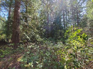 Photo 4: LT 26 Berg Rd in : Isl Gabriola Island Land for sale (Islands)  : MLS®# 873535