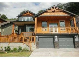 Photo 1: 13890 232ND ST in Maple Ridge: Silver Valley House for sale : MLS®# V949392