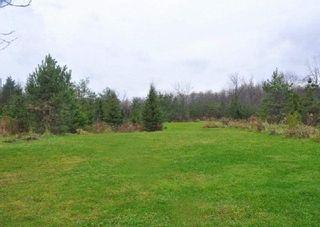 Photo 9: 3420 Cedar Springs Road in Burlington: Rural Burlington House (Bungalow-Raised) for sale : MLS®# W3072593